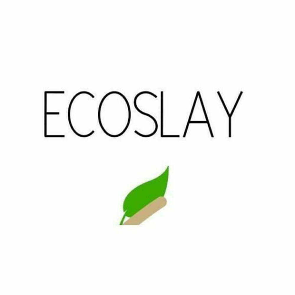 Ecoslay logo